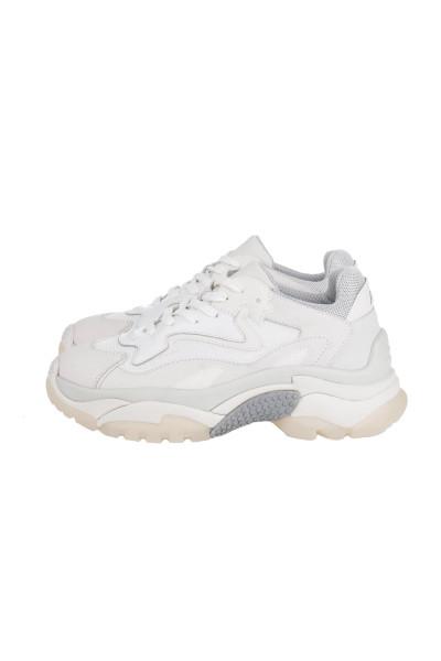 ASH Sneakers Addict